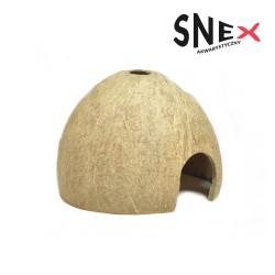 Kokos połówka szczotkowana